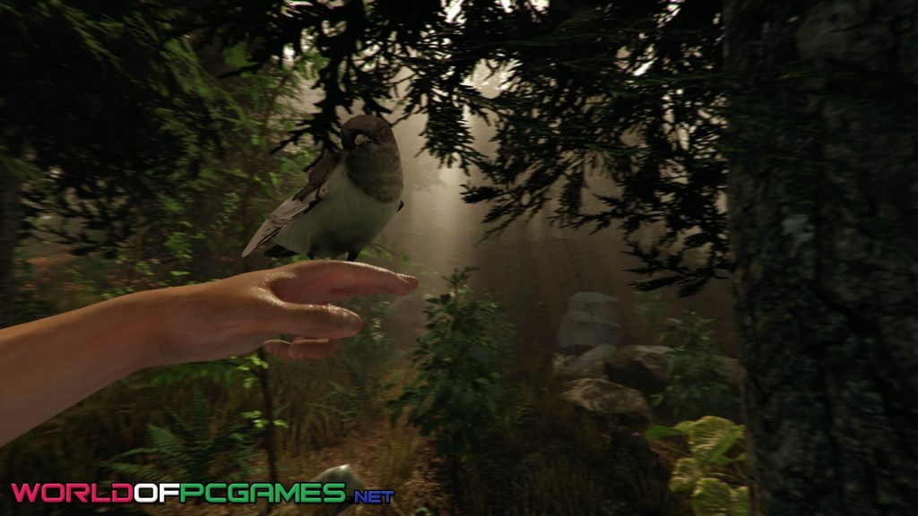 The Forest Free Download By Worldofpcgames.net