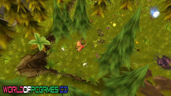 Dragon Never Cry Free Download PC Game By Worldofpcgames.co