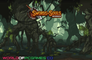 Swords And Souls Neverseen Free Download By Worldofpcgames.co