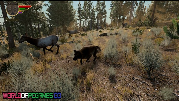 WolfQuest Edition Free Download By Worldofpcgames.co