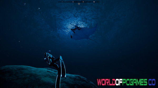 Beyond Blue Free Download PC Game By Worldofpcgames.co
